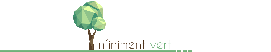 Infiniment Vert